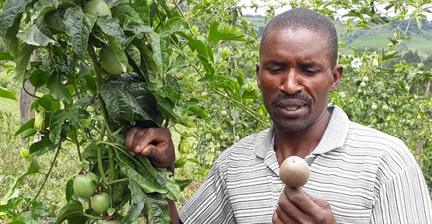 Elijah Langat, passion fruit farmer (Image Supplied)