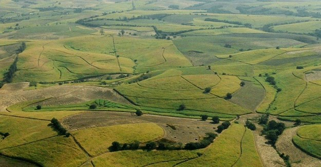 Fluglotse2000 via  - Sugar cane fields north of Durban