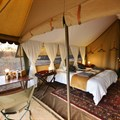 Hayward's Grand Safari Company awarded best mobile safari in Africa