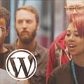 Hetzner sponsors WordCamp