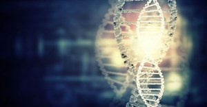 DNA kit set to boost fight against wildlife crime