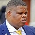 Energy minister, David Mahlobo