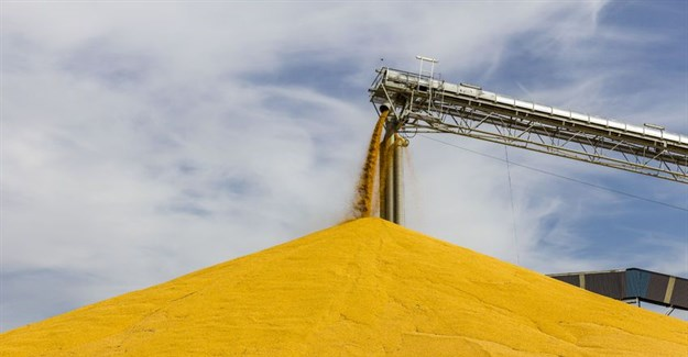 SA Competition Tribunal approves acquisition of maize milling companies