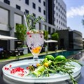 Protea Fire & Ice Hotels create movement around G&T trend