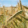 Challenges for agriculture in 2018