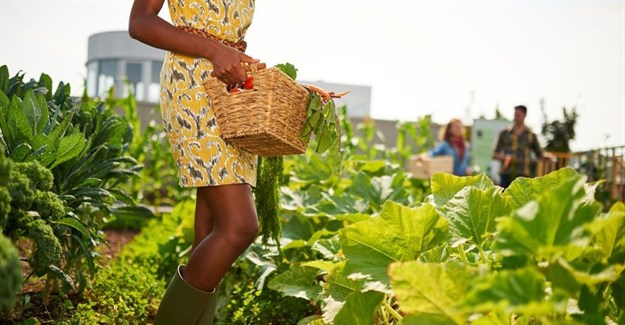 #BizTrends2018: Why education is the next big trend in African agriculture