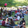 Backsberg Picnic Concert Series line-up announced