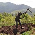 Bjvisser via  - Ethiopian farmer at work on his land.