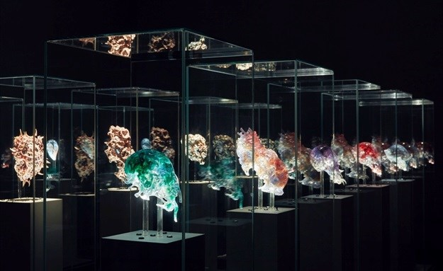 Vespers installation National Gallery of Victoria. © Tom Ross.