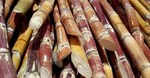 Biofuel from sugarcane: Why is SA not rushing ahead?