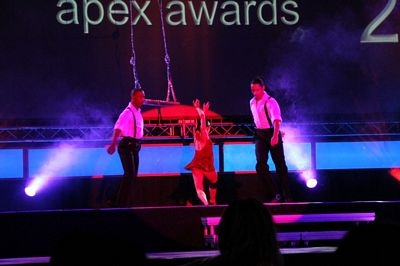 Apex Awards 2010