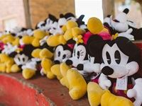 Miney and Mickey Mouse plush toys